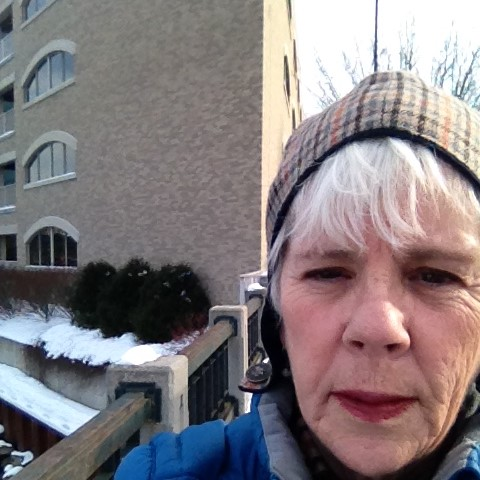 Barb Meredith Winter Walks in TC